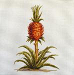 FF101 Pineapple Plant 16x16 13M Colors of Praise