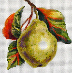 FF144 Pear 5x5 13M Colors of Praise