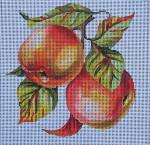 FF222 Apples 8x8  13M Colors of Praise