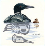 Stitching Studio, The Sue Coleman LOON & CHICK includes 1/2 and 3/4 stitches