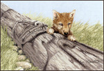 13-2832 Wolf Pup by Stitching Studio, The
