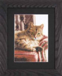 "PN146177 Lanarte Kit Relaxed Tabby 10"" x 14""; Linen; 27ct"