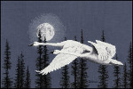 From the Artwork of Blaine Billman NIGHT MOVES (Trumpeter Swans)