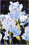 04-2675 Iris by Kustom Krafts