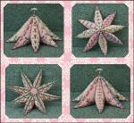 8 Point Star Garden •Just Nan Designs JN260