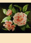 "LL254 Labors Of Love Peppermint Camellia 13 Mesh 11"" x 11"""