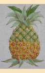 "LL287 Labors Of Love Pineapple 18 Mesh 14"" x 14"""