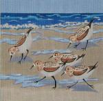 143 Danji Designs Sandpipers 12 x 12 13 Mesh