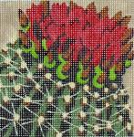 GL-115 Danji Designs GaIL Lang Cactus Flowers 4 x 4 18 Mesh