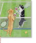 "CB-PL 10 Wimbledon 18  Mesh 5 x 5.75""CBK Ciao Bella Designs"