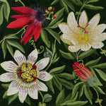 ED-1290 Dede's Needleworks Giant Passion Flower Vines 14 x 14, 13g