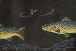 ED-1261 Dede's Needleworks Brown trout & Dry Fly 8 x 12, 13 g (black canvas)