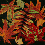 ED-1309 Dede's Needleworks Harvest Leaves 14 x 14, 18g