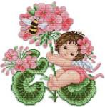 Ellen Maurer-Stroh Geranium Fairy
