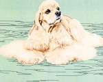 02-1293 American Cocker Spaniel-Blonde (Body) by Brenda Franklin Designs