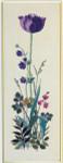 "77084178 Eva Rosenstand Kit Tulip 10"" x 26""; Linen; 26ct"