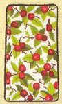 """77334559 Eva Rosenstand Kit Berry Eyeglass Case Includes material for mounting; 3-1/2"""" x 6""""; Linen; 30ct"""