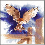 "HCK483 Heritage Crafts Kit Owl In Flight by John Clayton 13.5"" x 13.5""; Evenweave; 28ct"