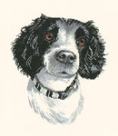 "HCK768 Heritage Crafts Kit Jake by Pauline Gledhill Dog 7"" x 8.5""; Evenweave; 27ct"
