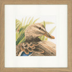 "PN146974 Lanarte Kit Mother Duck 7"" x 7""; Aida; 18ct"