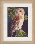 "PN146814 Lanarte Kit Owl 9"" x 13""; Aida; 14ct"