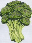 42 Broccoli 12.5 x 9.5 13 Count\ Silver Needle Designs