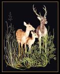 "GOK938B  Thea Gouverneur Kit Deer With Fawn 14"" x 18""; Aida; 18ct"