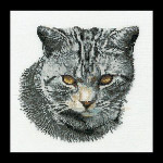 "GOK932 Thea Gouverneur Kit Cyprian Cat 12"" x 16""; Linen; 25ct"