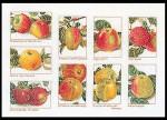 """GOK2082 Thea Gouverneur Kit Apples 18"""" x 12""""; Linen; 36ct"""
