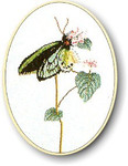 "GOK1022 Thea Gouverneur Kit Green Butterfly 10"" x 13""; Linen; 30ct"
