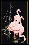 GOK1070B Thea Gouverneur Kit Feeding Flamingos