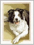 "HCK418 Heritage Crafts Kit Border Collie Dog - John Stubb 6"" x 9""; Evenweave; 28ct"