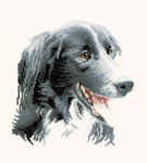 "HCK827 Heritage Crafts Kit Todd by Pauline Gledhill Dog 7.5"" x 7""; Evenweave; 27ct"