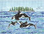 SWB141 Orca Family 8X10 18 Mesh Cooper Oaks Designs