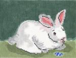 SVG623 Roger 6X8 13 Mesh Cooper Oaks Designsn Bunny