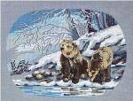 Bears Permin Graphs