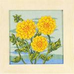 Chrysanthemum Permin Graphs
