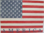 1776 NeedleDeeva 10.75 x 8.5 13 Mesh Contemporaary American Flag
