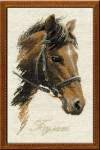 RL826 Riolis Cross Stitch Kit Bulat