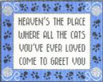 CC714 All The Cats 7.5X9.25 13 Mesh Cooper Oaks Designs