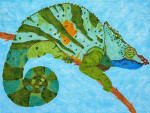 Waterweave C175 Chameleon 18 mesh 9.5 x 7