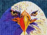 Waterweave C150 Eagle Eyes 18 mesh 7 x 5.25