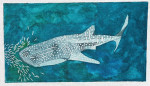 Waterweave C520 Whale Shark 18 mesh 16 x 9