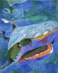 Waterweave C500 Card Shark 18 mesh 8.25 x 11