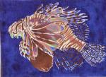 Waterweave C511 Lionfish 18 mesh 11 x 8