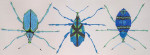 Waterweave CO1222B Lesser of Three Weevils 14 Mesh 22 x 7.5