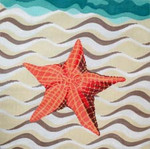 C-439d Sandy Starfish 16 x 16 13 Meredith Collection