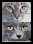 """GOK541A  Thea Gouverneur Kit Cats - Jack & Luna 6.8"""" x 4.8"""" EACH; Aida; 16ct"""