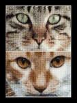 """GOK543A  Thea Gouverneur Kit Cats - Tess & Simba 6.8"""" x 4.8"""" EACH; Aida; 16ct"""