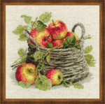 "RL1450 Riolis Cross Stitch Kit Ripe Apples 11.75"" x 11.75""; Aida; 10ct"